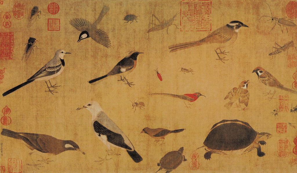Huang Quan: Birds Sketched from Life