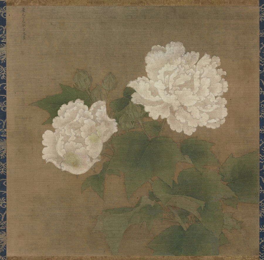 Li Di: White Cotton Rose